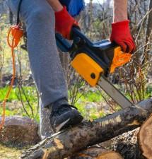 Pomocníci do záhrady – Motorová píla a tlakový čistič