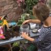Zimná záhrada ako v trópoch? Vďaka Hornbachu žiadny problém!